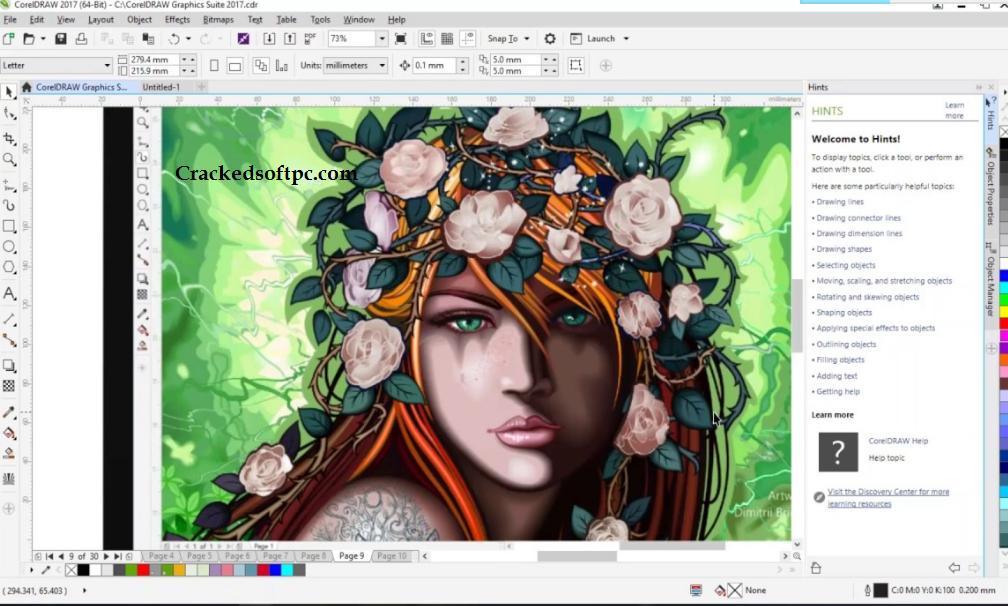 CorelDRAW Graphics Suite Key