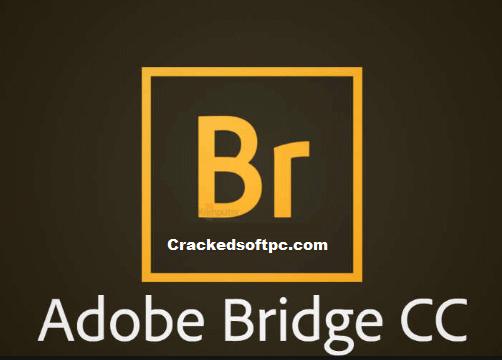 Adobe 10.1.1 keygen